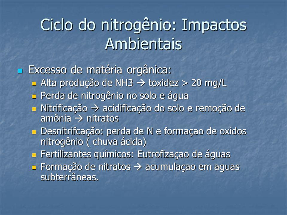 Ciclo do nitrogênio: Impactos Ambientais