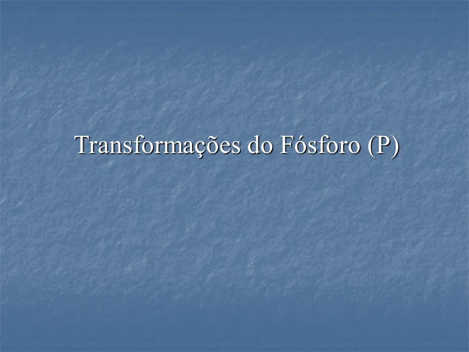 Transformações do Fósforo (P)