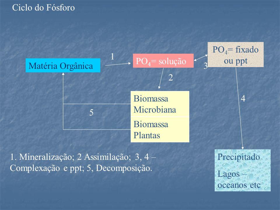 Ciclo do Fósforo PO4= fixado ou ppt. 1. PO4= solução. Matéria Orgânica. 3. 2. Biomassa Microbiana.