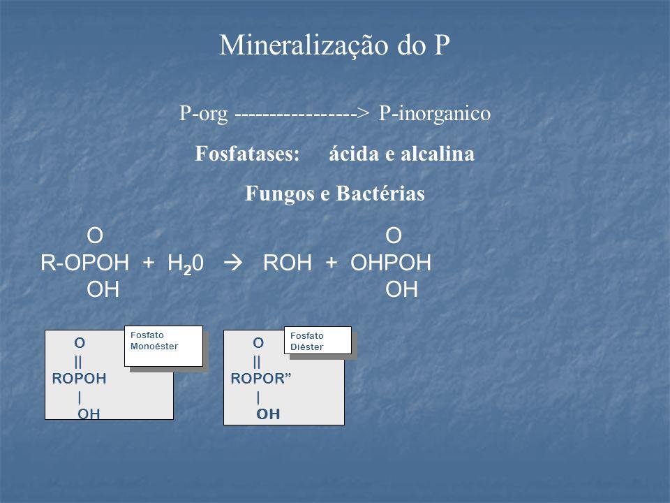 Fosfatases: ácida e alcalina