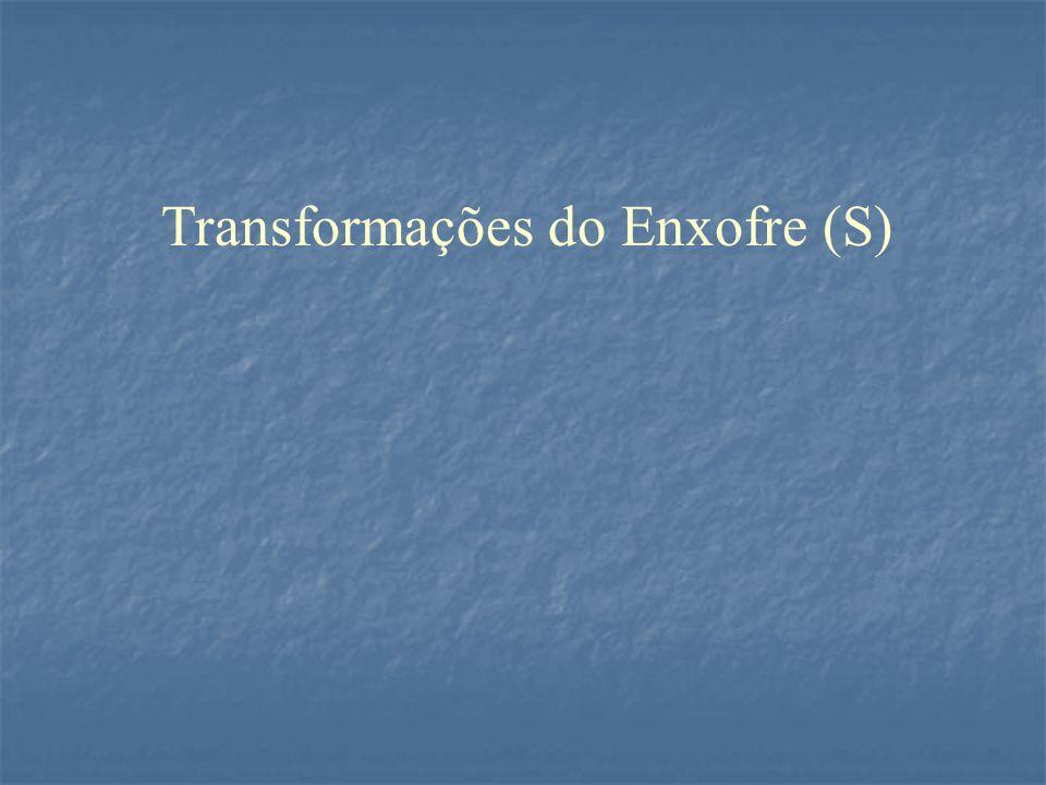 Transformações do Enxofre (S)