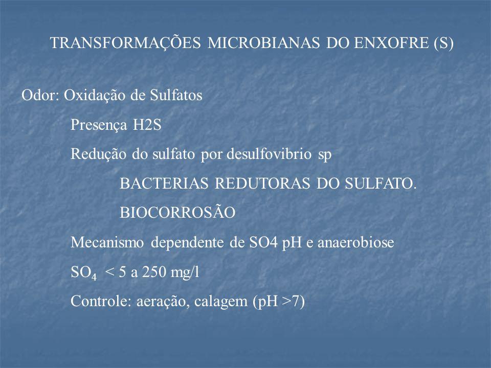 TRANSFORMAÇÕES MICROBIANAS DO ENXOFRE (S)