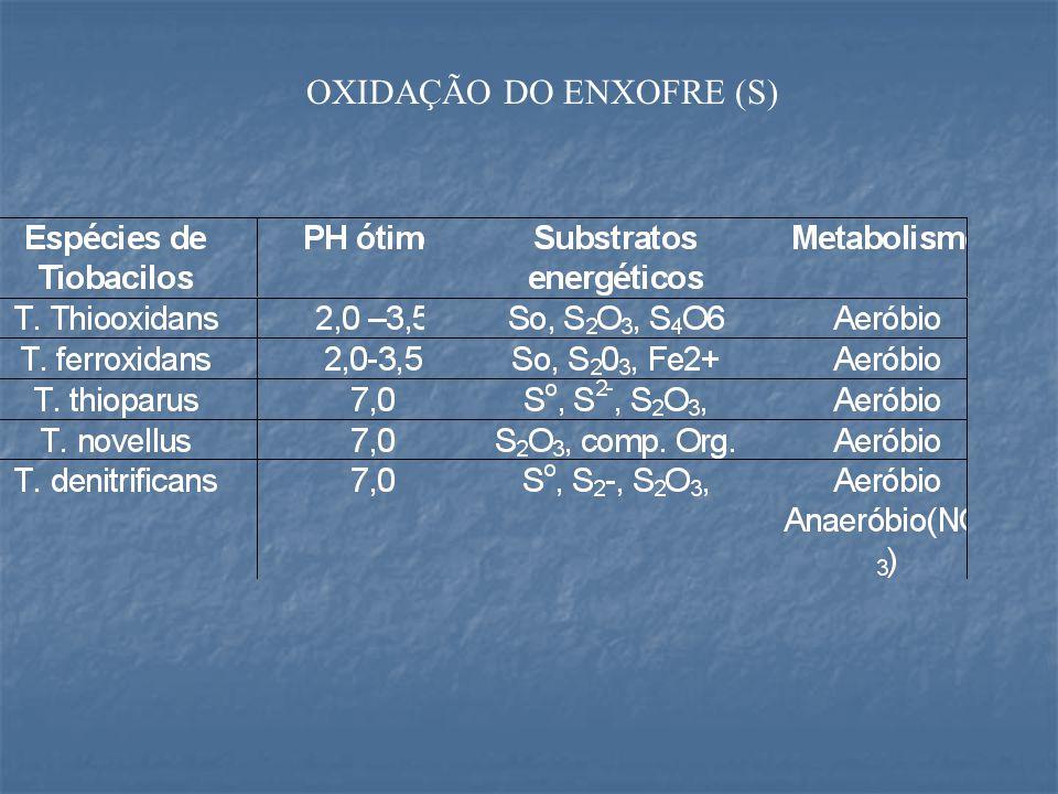 OXIDAÇÃO DO ENXOFRE (S)