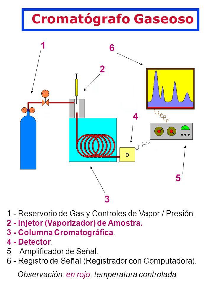 Cromatógrafo Gaseoso 1. 2. 3. 4. 6. 5. 1 - Reservorio de Gas y Controles de Vapor / Presión. 2 - Injetor (Vaporizador) de Amostra.