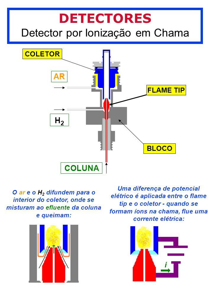 Detector por Ionização em Chama