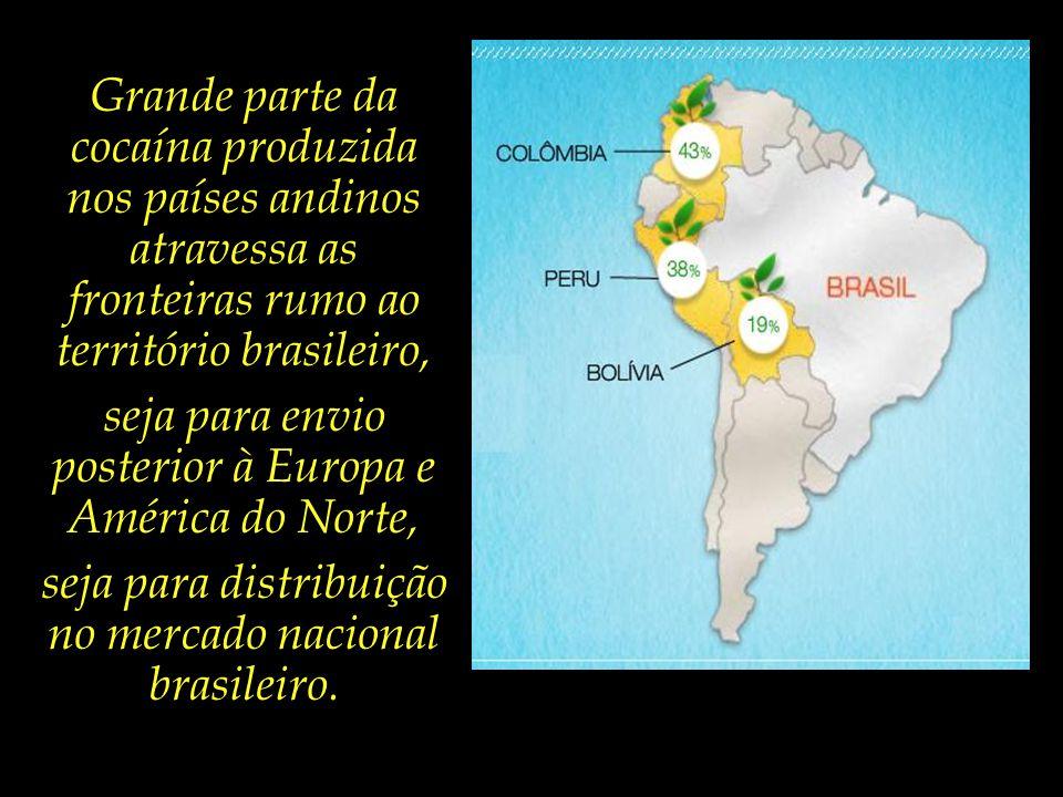 Grande parte da cocaína produzida nos países andinos atravessa as