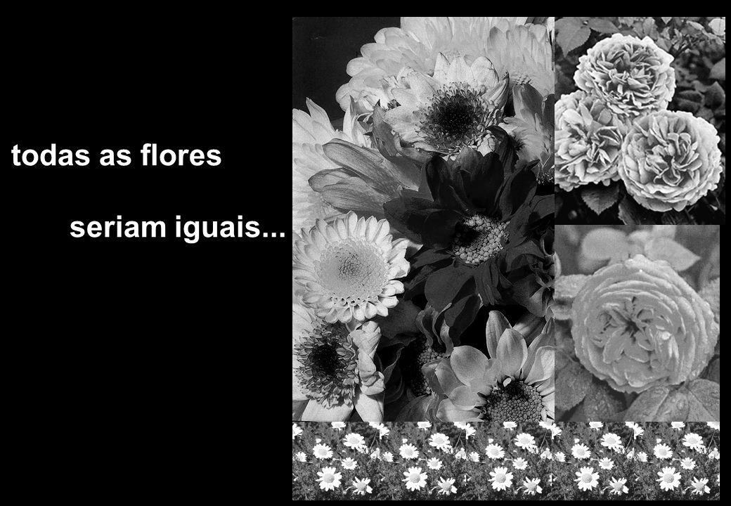 todas as flores seriam iguais...
