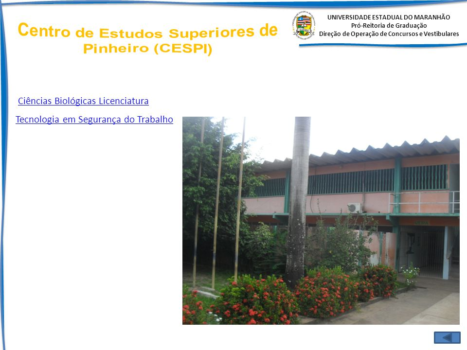 Centro de Estudos Superiores de Pinheiro (CESPI)