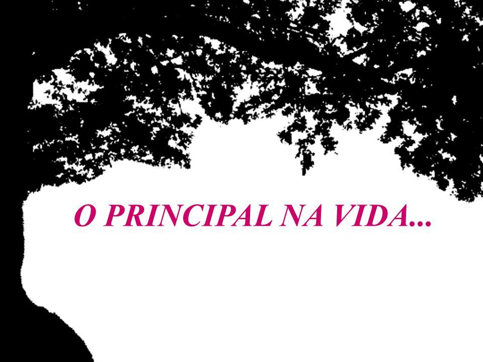 O PRINCIPAL NA VIDA... ©
