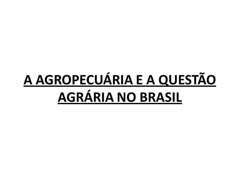 A AGROPECUÁRIA E A QUESTÃO AGRÁRIA NO BRASIL