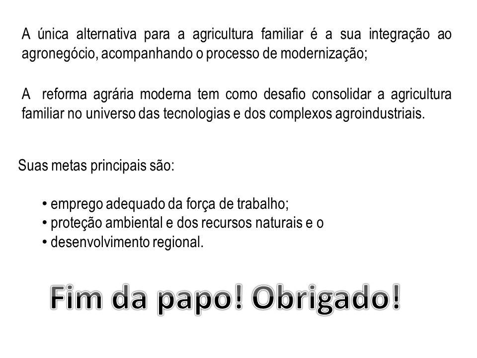 A única alternativa para a agricultura familiar é a sua integração ao agronegócio, acompanhando o processo de modernização;