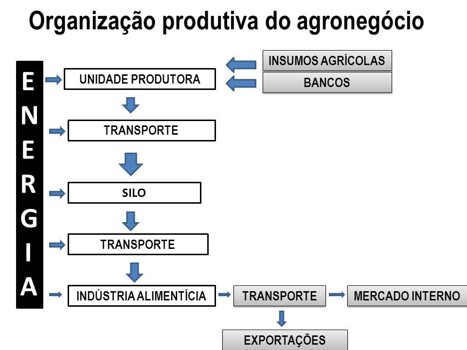 Organização produtiva do agronegócio