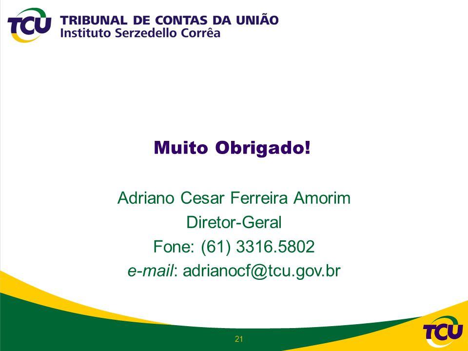 Muito Obrigado! Adriano Cesar Ferreira Amorim Diretor-Geral