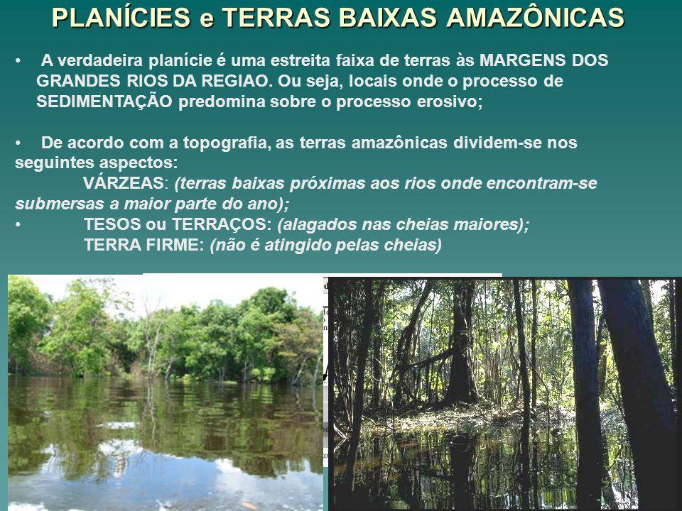 PLANÍCIES e TERRAS BAIXAS AMAZÔNICAS