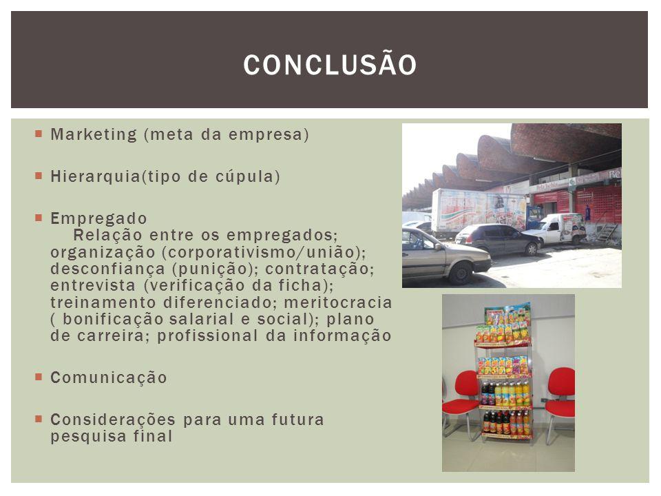 CONCLUSÃO Marketing (meta da empresa) Hierarquia(tipo de cúpula)