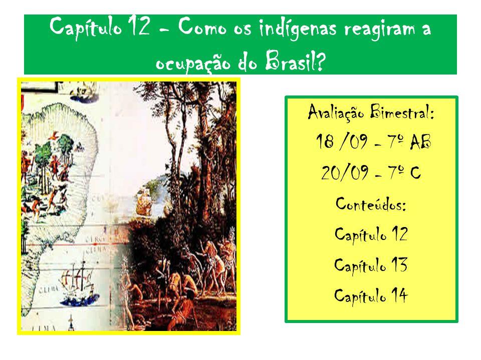 Capítulo 12 - Como os indígenas reagiram a ocupação do Brasil