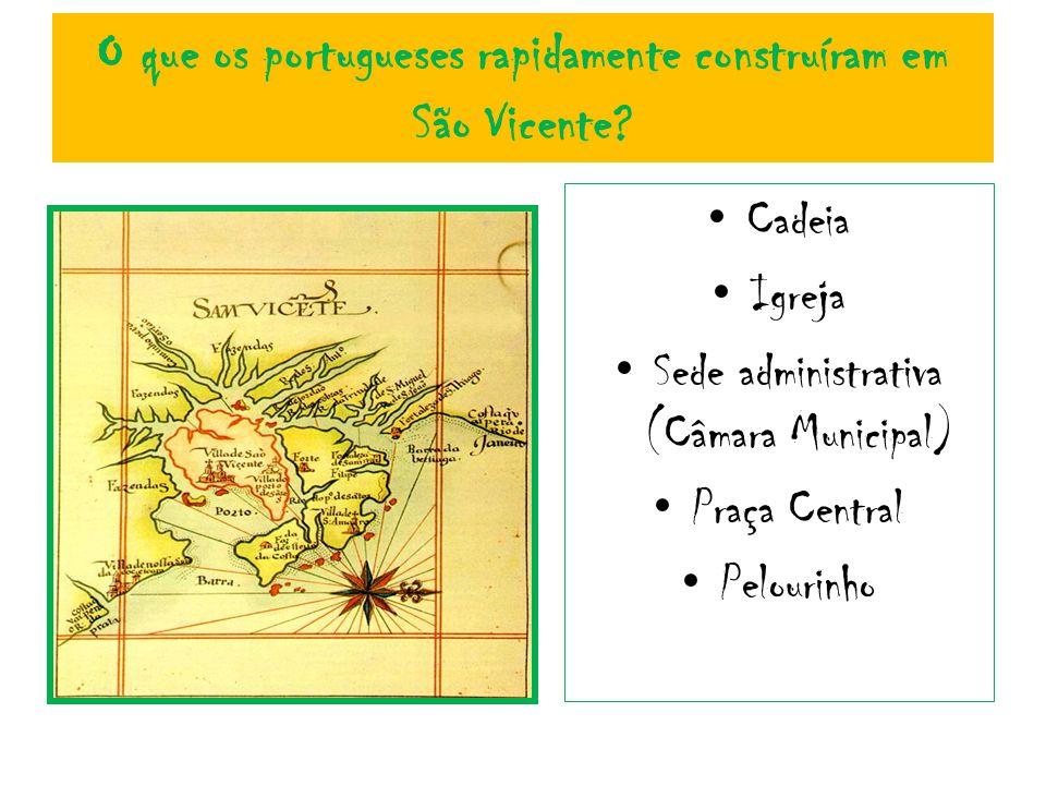 O que os portugueses rapidamente construíram em São Vicente