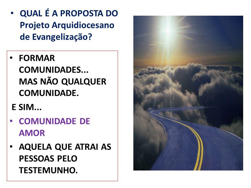 QUAL É A PROPOSTA DO Projeto Arquidiocesano de Evangelização