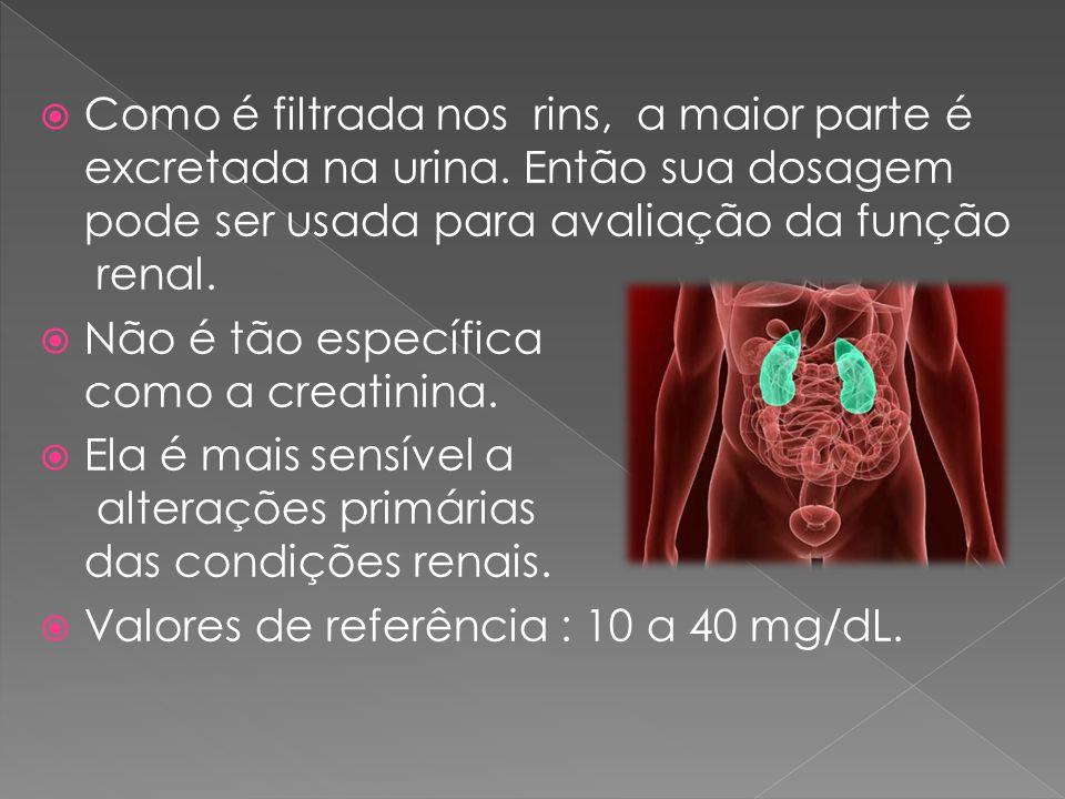 Como é filtrada nos rins, a maior parte é excretada na urina