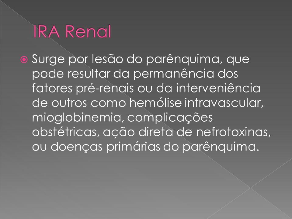 IRA Renal
