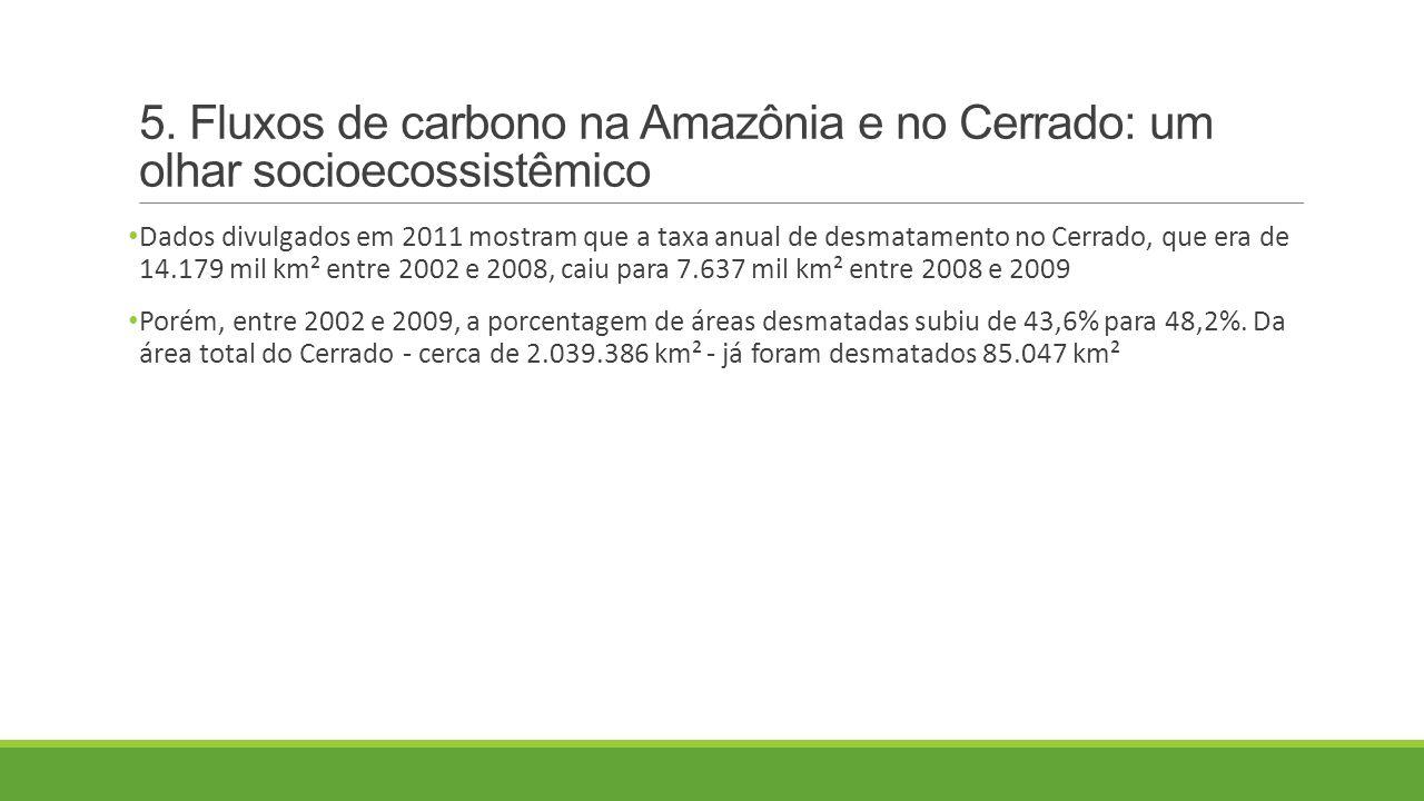 5. Fluxos de carbono na Amazônia e no Cerrado: um olhar socioecossistêmico