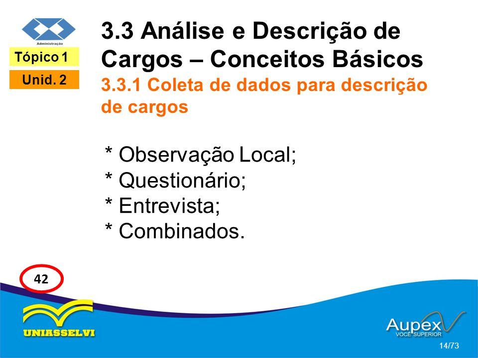 3. 3 Análise e Descrição de Cargos – Conceitos Básicos 3. 3