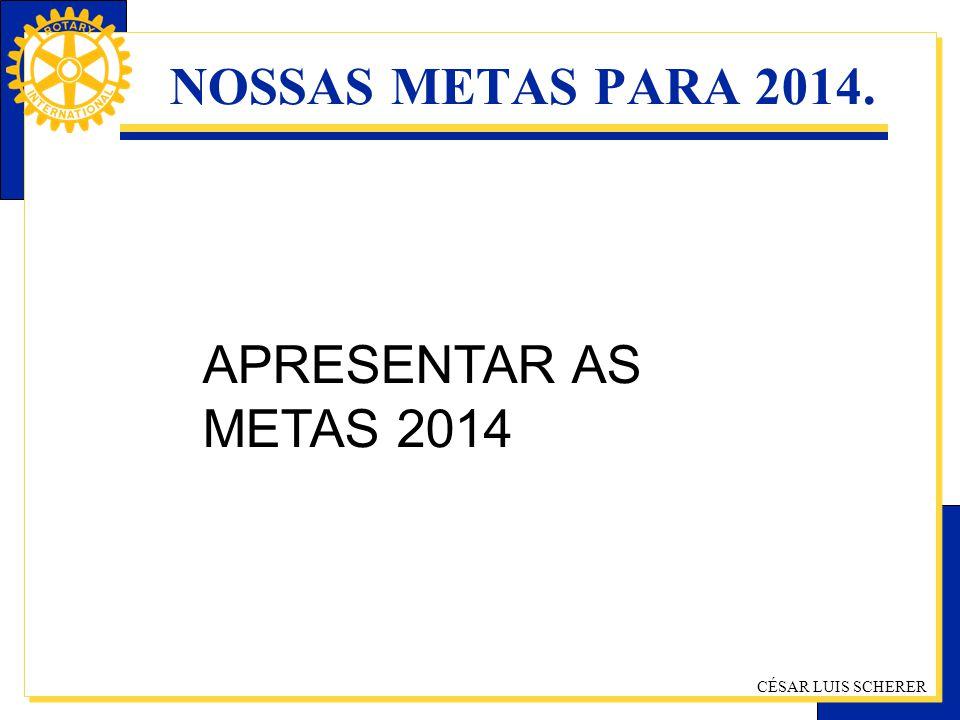 NOSSAS METAS PARA 2014. APRESENTAR AS METAS 2014