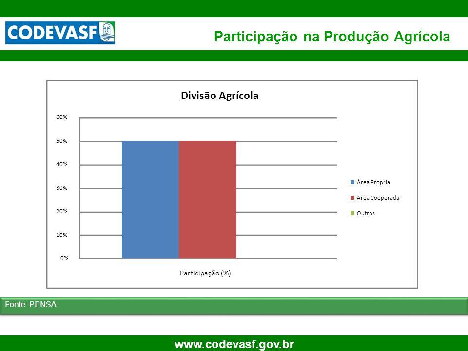 Participação na Produção Agrícola