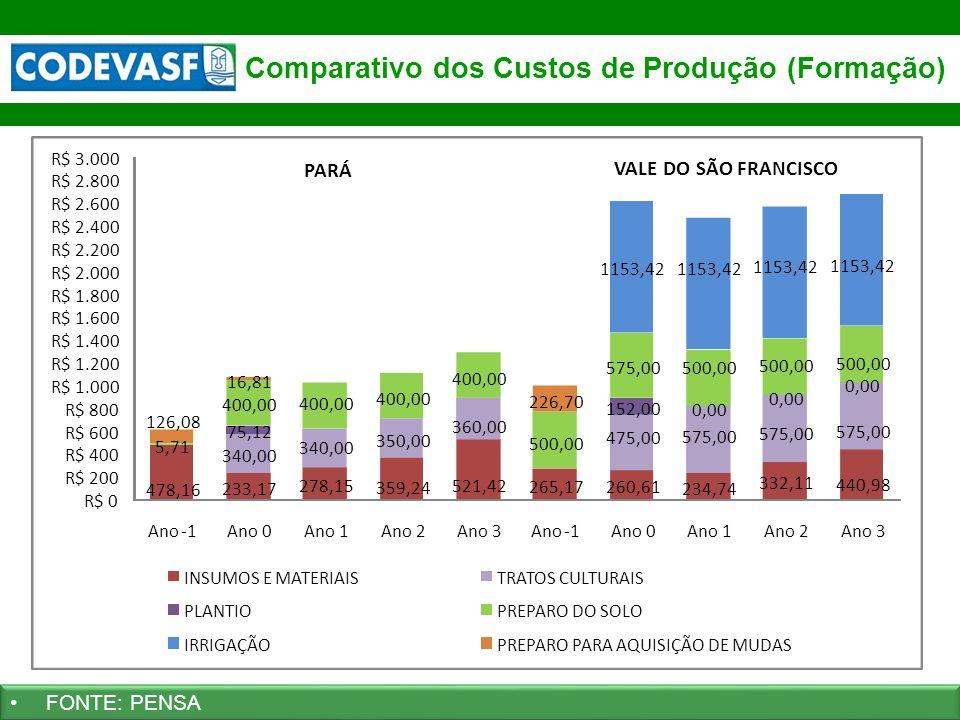 Comparativo dos Custos de Produção (Formação)