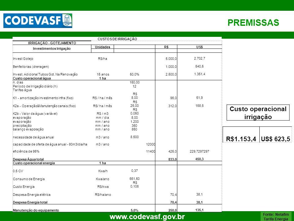 PREMISSAS Custo operacional irrigação R$1.153,4 US$ 623,5 55