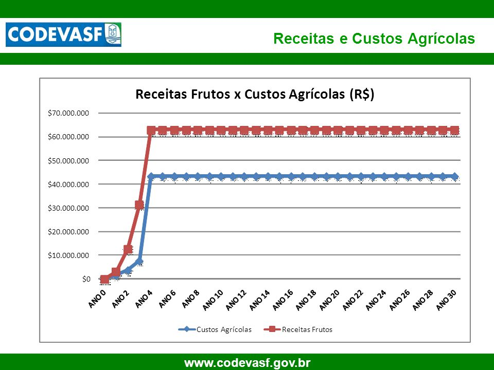 Receitas e Custos Agrícolas