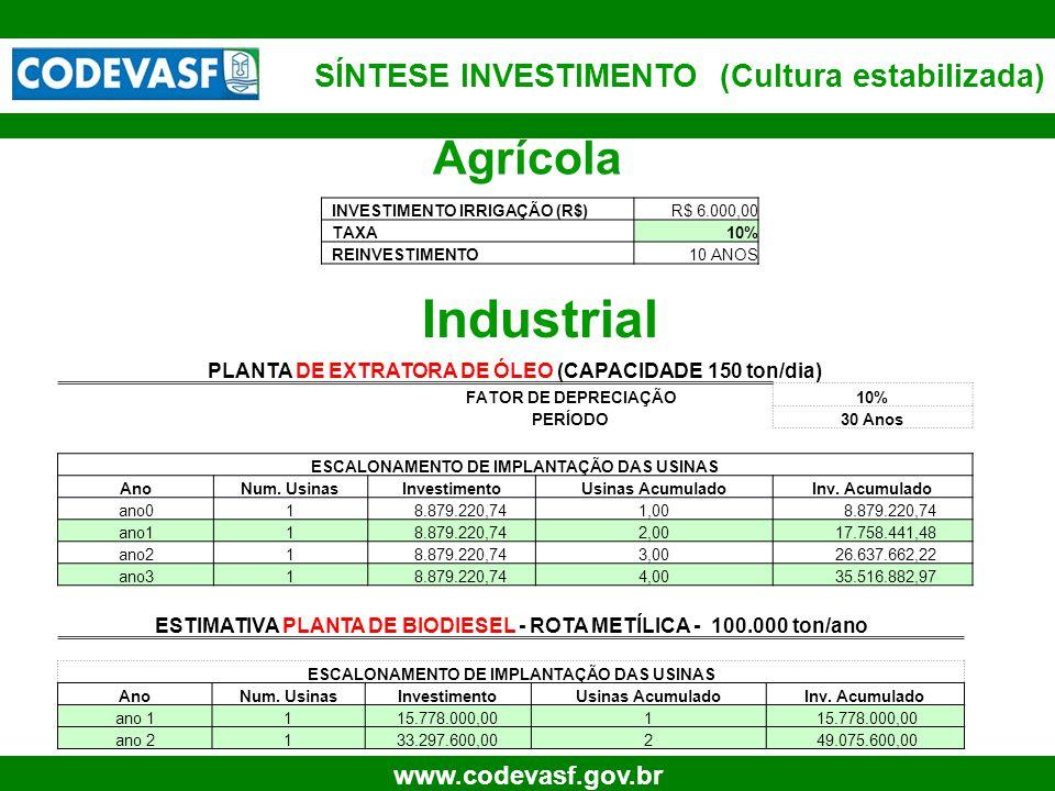 Industrial Agrícola SÍNTESE INVESTIMENTO (Cultura estabilizada)