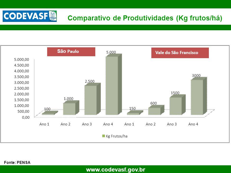 Comparativo de Produtividades (Kg frutos/há)