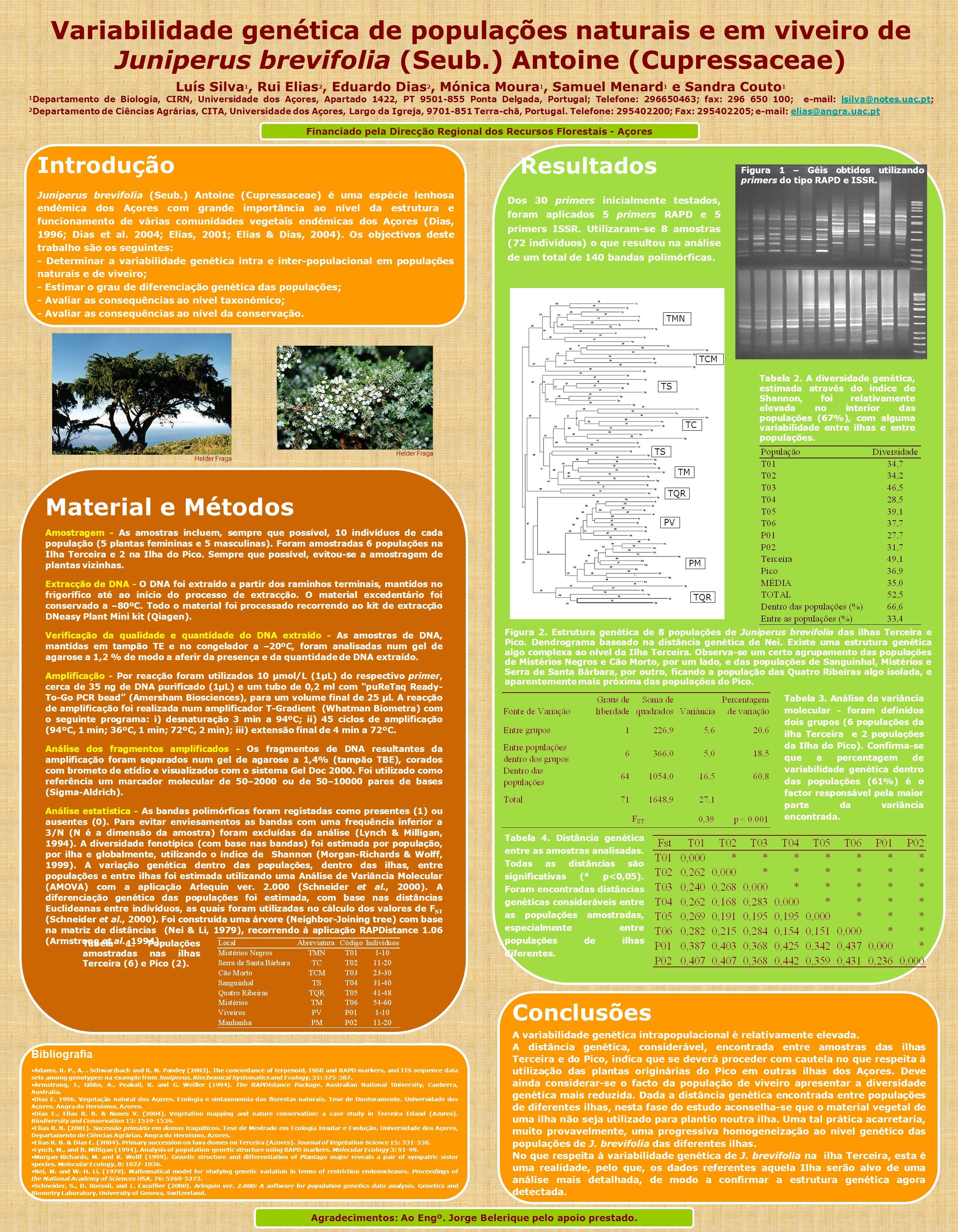 Variabilidade genética de populações naturais e em viveiro de