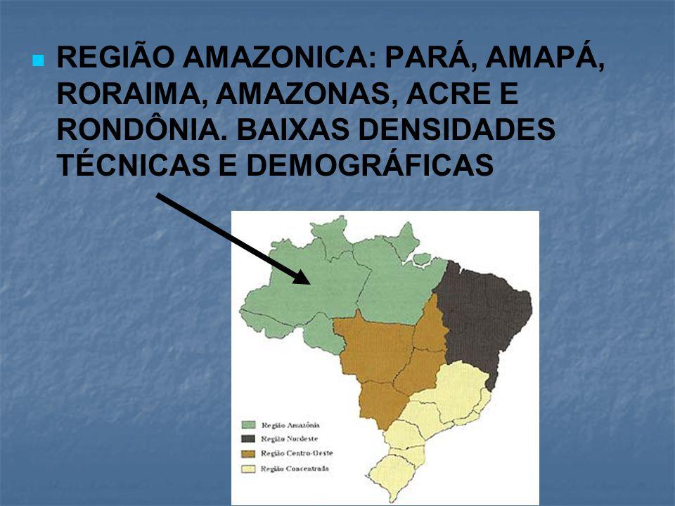 REGIÃO AMAZONICA: PARÁ, AMAPÁ, RORAIMA, AMAZONAS, ACRE E RONDÔNIA