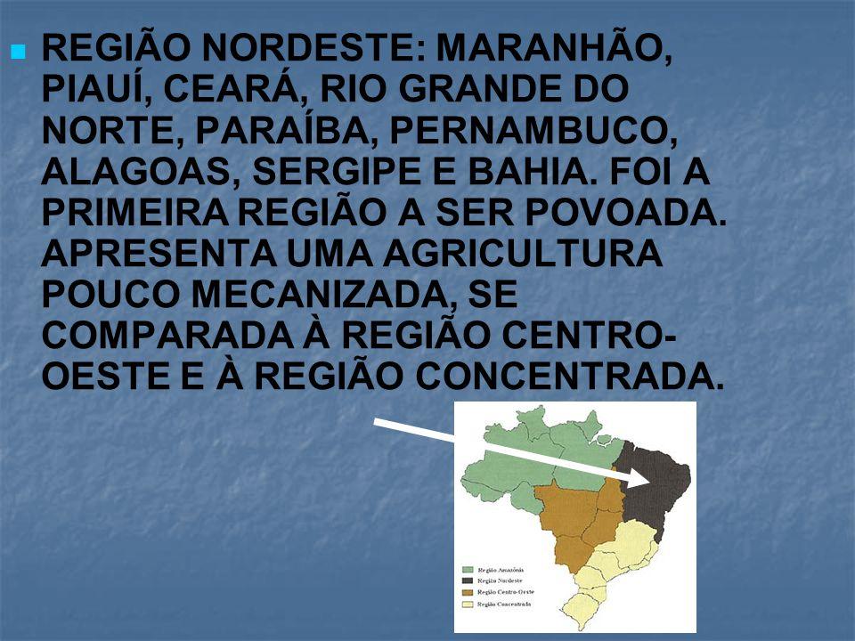 REGIÃO NORDESTE: MARANHÃO, PIAUÍ, CEARÁ, RIO GRANDE DO NORTE, PARAÍBA, PERNAMBUCO, ALAGOAS, SERGIPE E BAHIA.