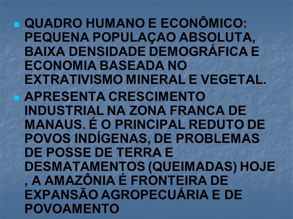 QUADRO HUMANO E ECONÔMICO: PEQUENA POPULAÇAO ABSOLUTA, BAIXA DENSIDADE DEMOGRÁFICA E ECONOMIA BASEADA NO EXTRATIVISMO MINERAL E VEGETAL.