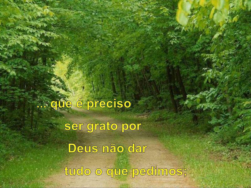 ... que é preciso ser grato por Deus não dar tudo o que pedimos;