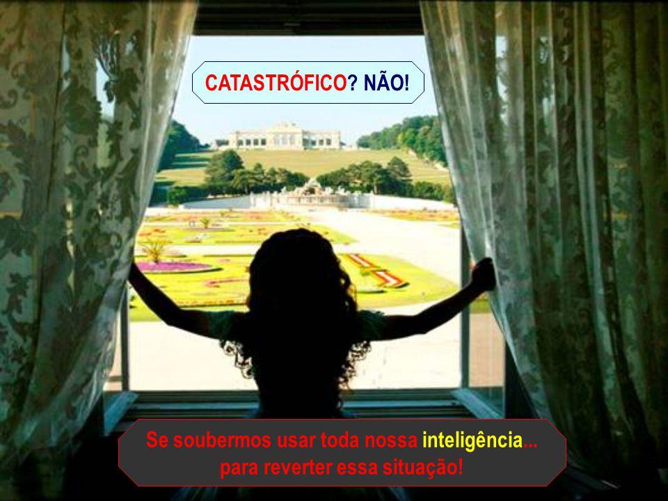 Se soubermos usar toda nossa inteligência...