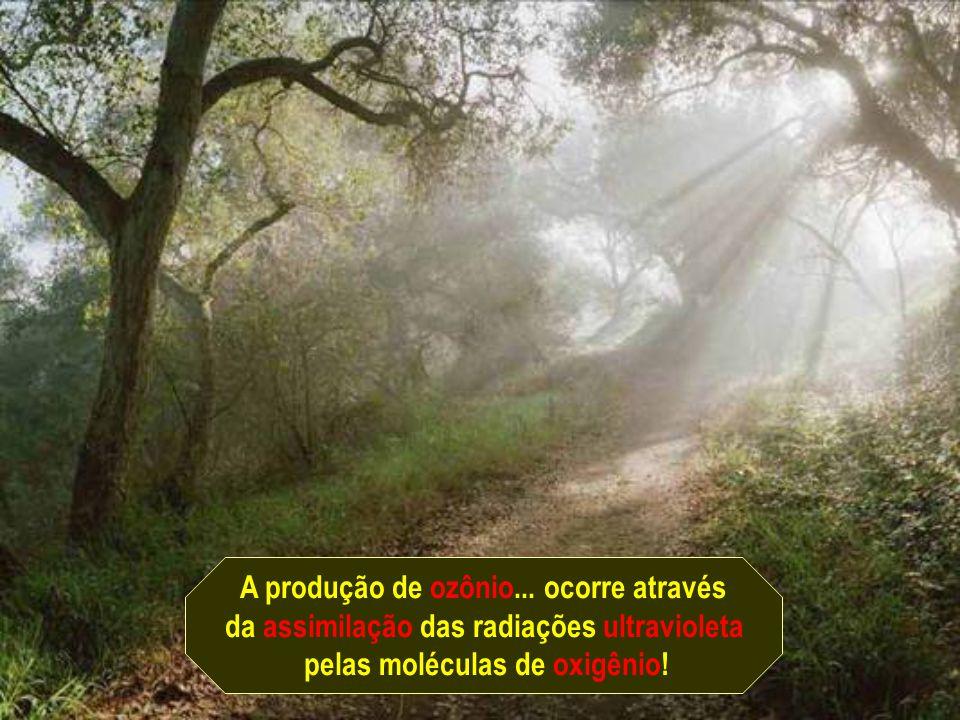 A produção de ozônio... ocorre através