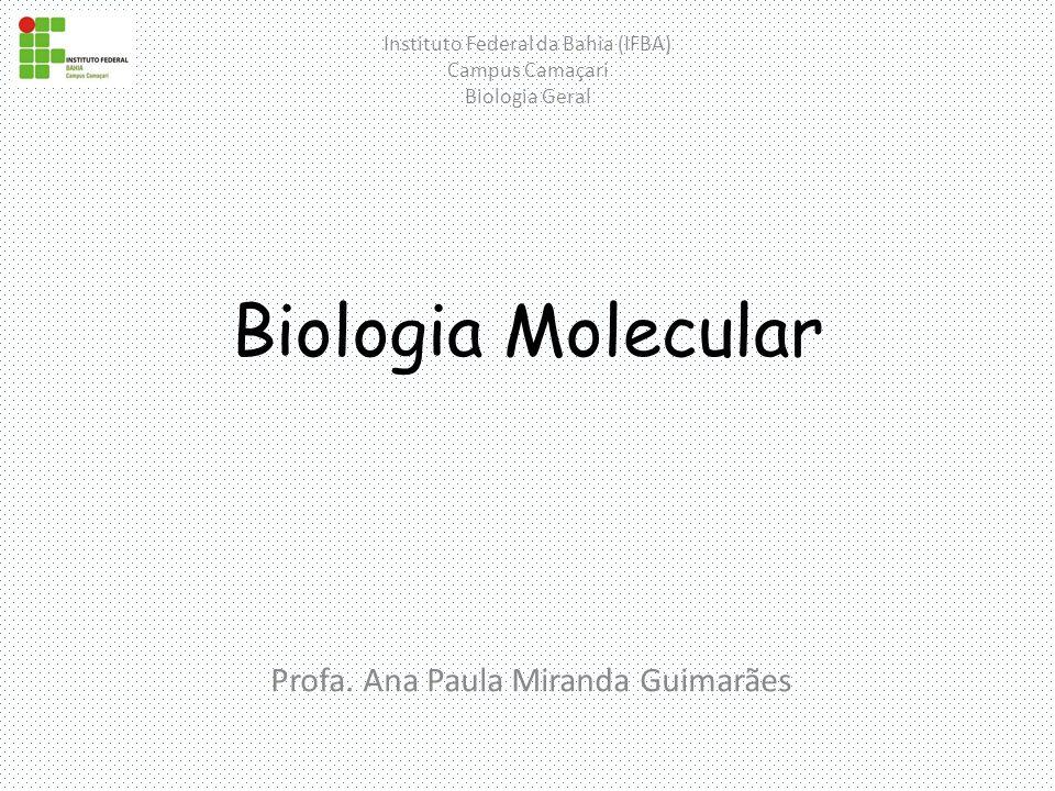 Profa. Ana Paula Miranda Guimarães