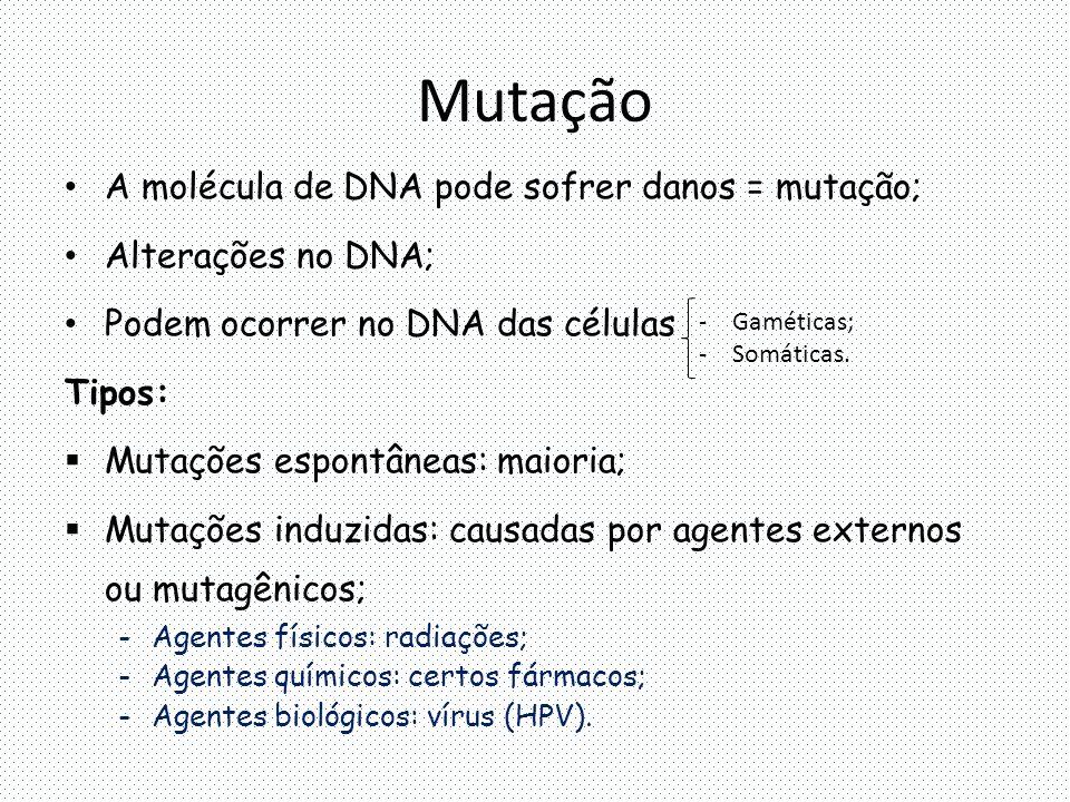 Mutação A molécula de DNA pode sofrer danos = mutação;