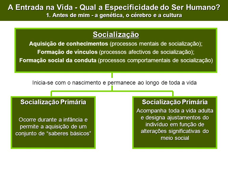 Socialização Primária Socialização Primária