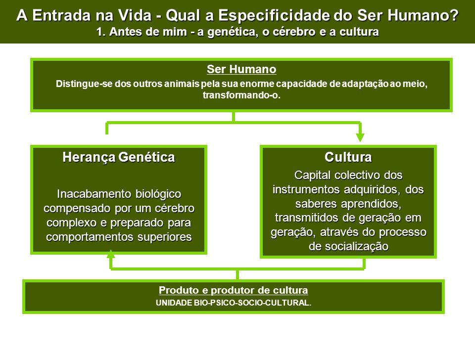 Produto e produtor de cultura UNIDADE BIO-PSICO-SOCIO-CULTURAL.