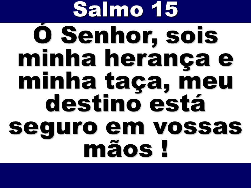 Salmo 15 Ó Senhor, sois minha herança e minha taça, meu destino está seguro em vossas mãos !