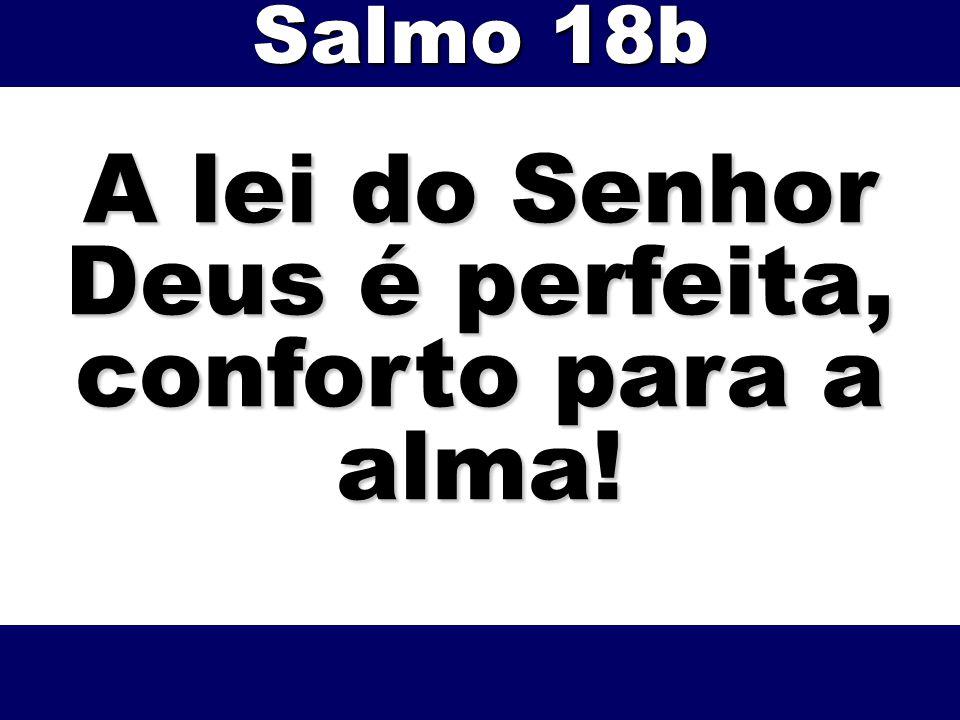 A lei do Senhor Deus é perfeita, conforto para a alma!