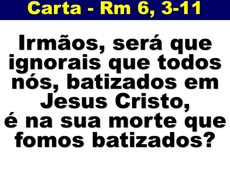 Irmãos, será que ignorais que todos nós, batizados em Jesus Cristo,