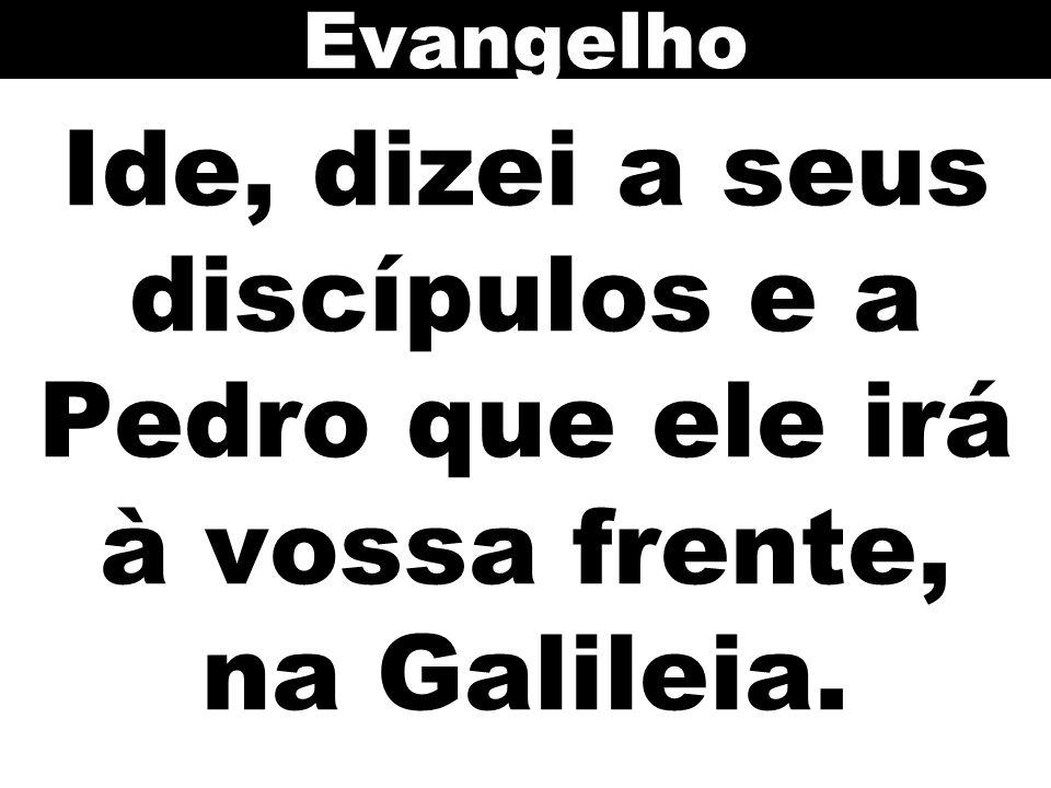 Evangelho Ide, dizei a seus discípulos e a Pedro que ele irá à vossa frente, na Galileia.