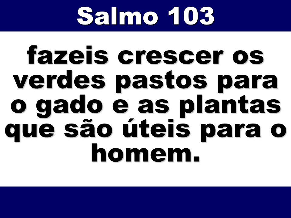 Salmo 103 fazeis crescer os verdes pastos para o gado e as plantas que são úteis para o homem.