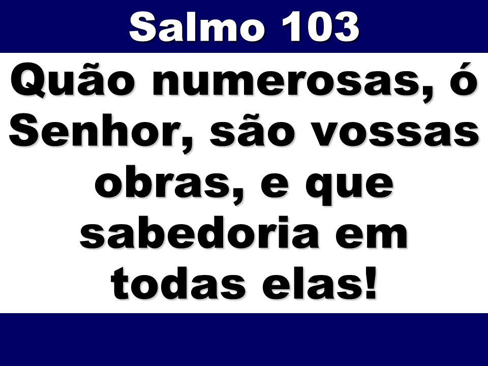 Salmo 103 Quão numerosas, ó Senhor, são vossas obras, e que sabedoria em todas elas!